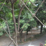 Parque Porto Seguro